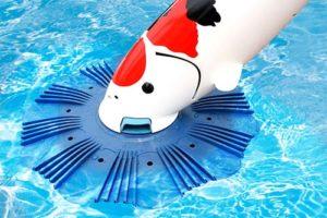 Accesorios de limpiezas de piscinas en managua